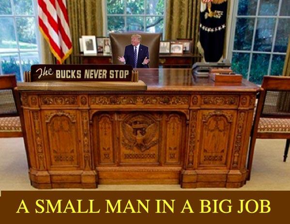 <em>Trump Is A Small Man In A Big Job</em>