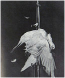 Famous Political Art John Heartfield photomontage The Meaning Of Geneva for AIZ Magazine